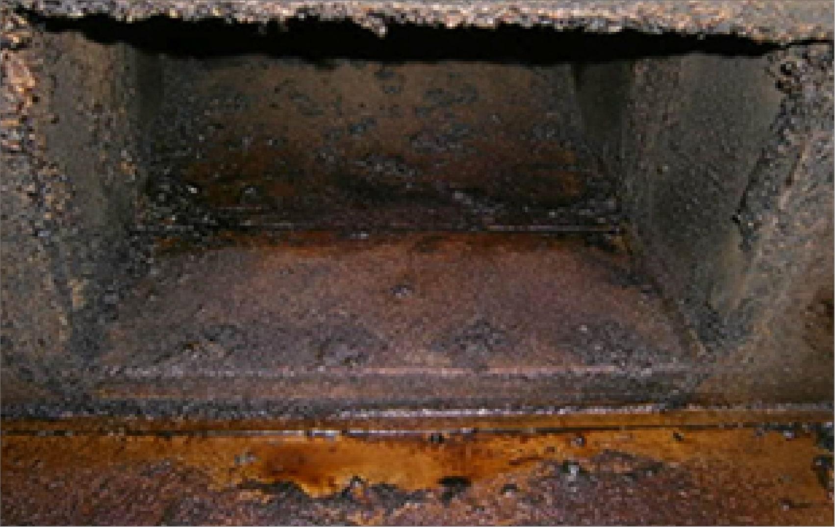 清掃する前の汚れている空調機部分の2種類目